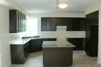 Kitchen cabinet and Granite counters top