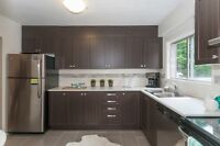 Brand new windows! Stainless steel appliances! Newly upgraded!