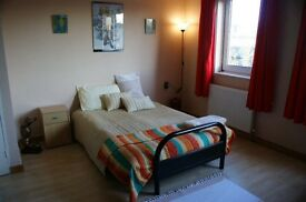 Large, clean double room for couple or single professionals