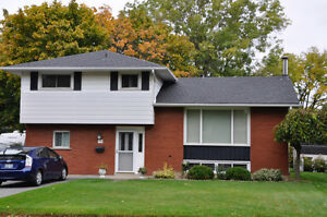 Roofing - Siding - Windows / Doors Kitchener / Waterloo Kitchener Area image 10