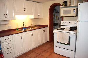 All Inclusive, Private, Stylish, Clean 2 BRD Apartment!
