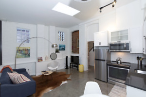 NEW Downtown Furnished Condo