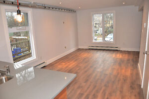 Newly renovated rustic modern 2 bedroom steps from Downtown London Ontario image 4