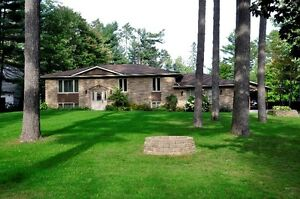 BEATIFUL 1.1 ACRE RAVINE LOT