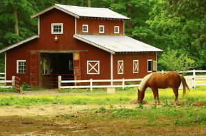 HOBBY FARM UP TO $1,000,000 - WE ARE CASH BUYERS London Ontario image 1