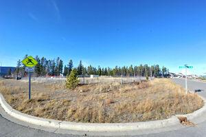 51 Keewenaw Drive - Copper Ridge REALTOR® Dave Pearson