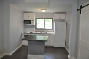 NEWLY RENOVATED MODERN 1 BEDROOM PLUS DEN