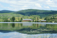160 Acres with 1400 Meters of Frontage on McCauley Lake