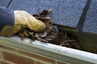 FREE ESTIMATES - gutter cleaning, moss removal & more