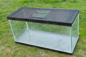 Terrarium- Glass with SECURE lid