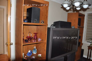 TV & Shelves