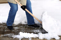 Snow removal Need helpers Paid per driveway start tomorrow!