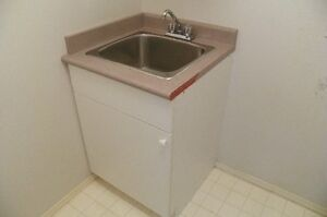 Laundry cabinet, sink and faucet, $125