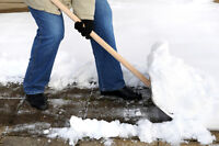 Snow clearing - Deneigement - South Shore/Rive Sud