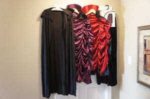 Capes - 4 to choose from (Fits Teen to Adult) Kitchener / Waterloo Kitchener Area image 1