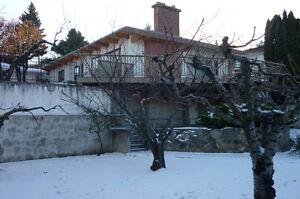 Bi-Level House