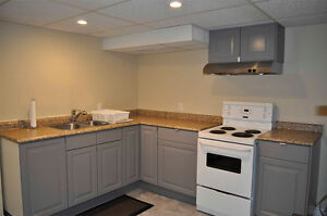 Newly Renovated 1-Bedroom Basement Apartment - Avail. May 1st!