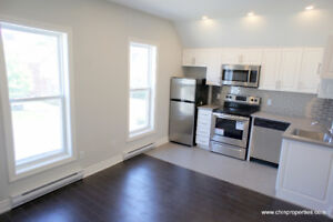 Stunning and Brand New Renovated 1 Bedroom, close to Downtown
