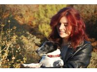 Scoopergirl - professional, reliable dog walking in Edinburgh