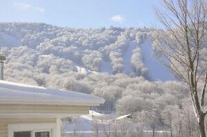Condo à louer près des pistes de ski - monts Sutton