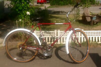 Raleigh 'Safari' 6 Speed Men's Cruiser