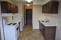 2 Bedroom Family Orientated Sahali Townhome /November 1