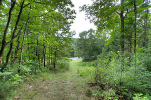 BEAUTIFUL LOT WITH DRILLED WELL ONSITE! Peterborough Peterborough Area image 8