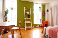 Whole Apt in St-Henri for Feb & March