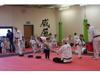 ABC Dragons, XS Taekwondo Penilee