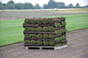 Landscaping Materials Delivery Services Dirt/Mulch/Sod/Lumber