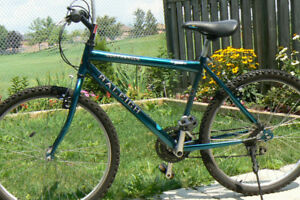EXCELLENT LARGE RALEIGH Bike- Made in CANADA-Upto 5 Ft 10 Inch