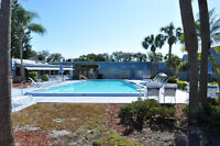 Clearwater,Florida-Smoke-Free  1 Bedroom Fully Equipped Condo