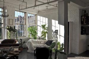Cherche Coloc pour loft industriel Calme et lumineux.
