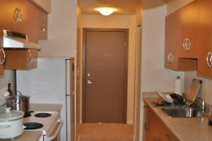 1 BEDROOM BASEMENT LEVEL APARTMENT/SAHALI