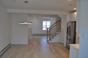 BRAND NEW HYDROSTONE EXECUTIVE TOWNHOUSE FOR RENT
