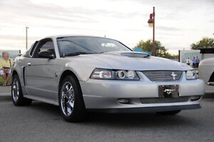 2004 Ford Mustang 40th Anniv Coupe (2 door)