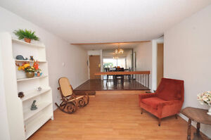 Beautiful 1 bed 1 bath condo in Carriage Lane