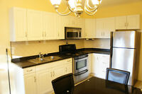 Stunning 2 Bedrooms + Den, mins to Downtown & New GO Station
