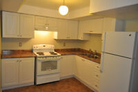 AVAILABLE OCTOBER 1 - Renovated Legal Basement Apartment in Ajax