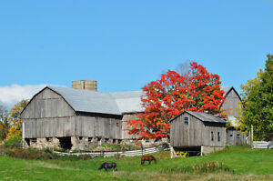 Photo/Film Location Available - Rural and Rustic