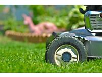 Gardener, gardening, ground and garden maintenance, hedge and grass cutting