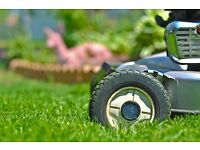 Gardener, gardening, ground and garden maintenance, hedge and grass cutting