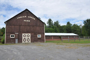 Hobby Farm For Sale in Pakenham Ontario Kingston Kingston Area image 5