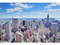 Travel Buddy Needed / Free Flight To New York