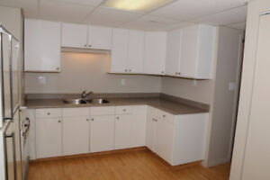 Bright 1 Bedroom Basement Suite (house)--incl utilities & Wi-Fi