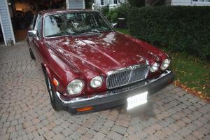 Fresh Restoration 1987 Jaguar XJ12 Vanden Plas