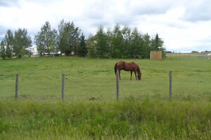 Horse boarding available for 3 horses. Near NW Airdrie & Calgary
