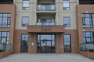 Downtown Penthouse, Brand New, 2 Bedroom, 2 Storey Condo