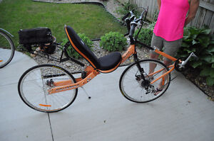 Recumbent Bicycle Cruzbike Quest Fits All
