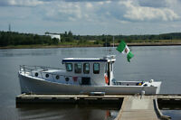 Cruiser / fishing boat for sale
